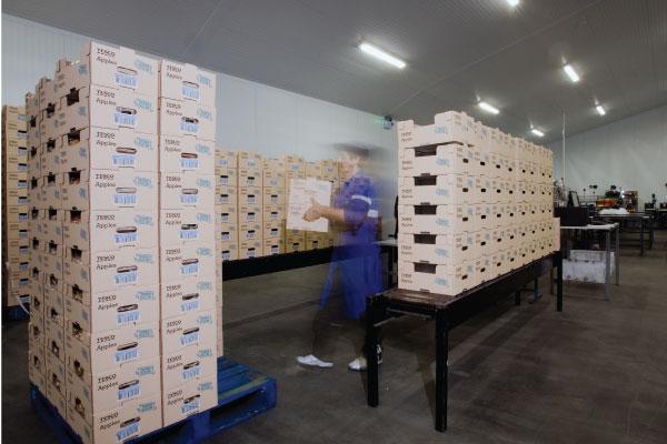 storage-600x400